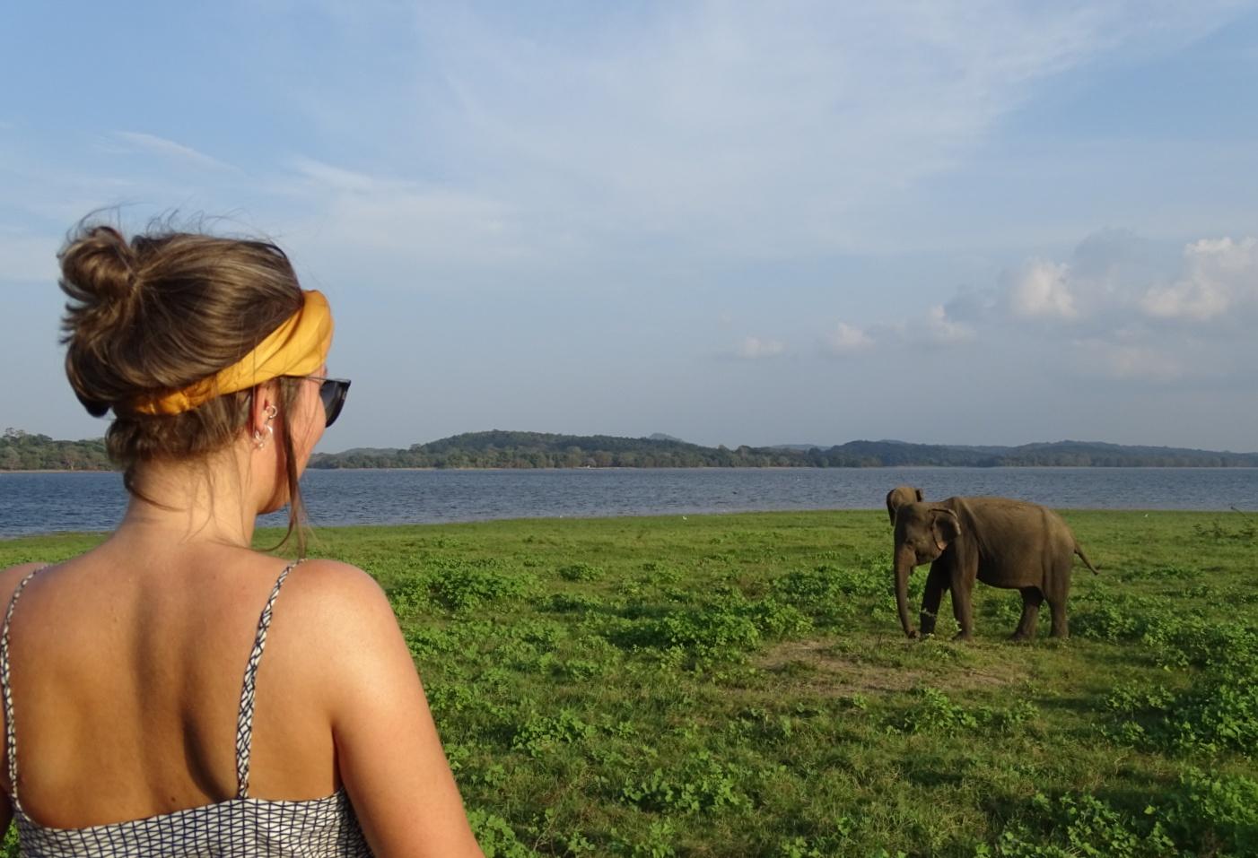 Gastblogger Chantal Roskam